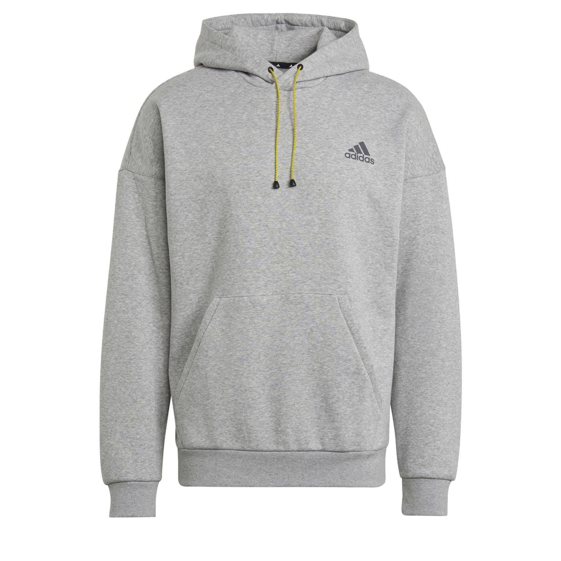 adidas Mountain Graphic Hoodie
