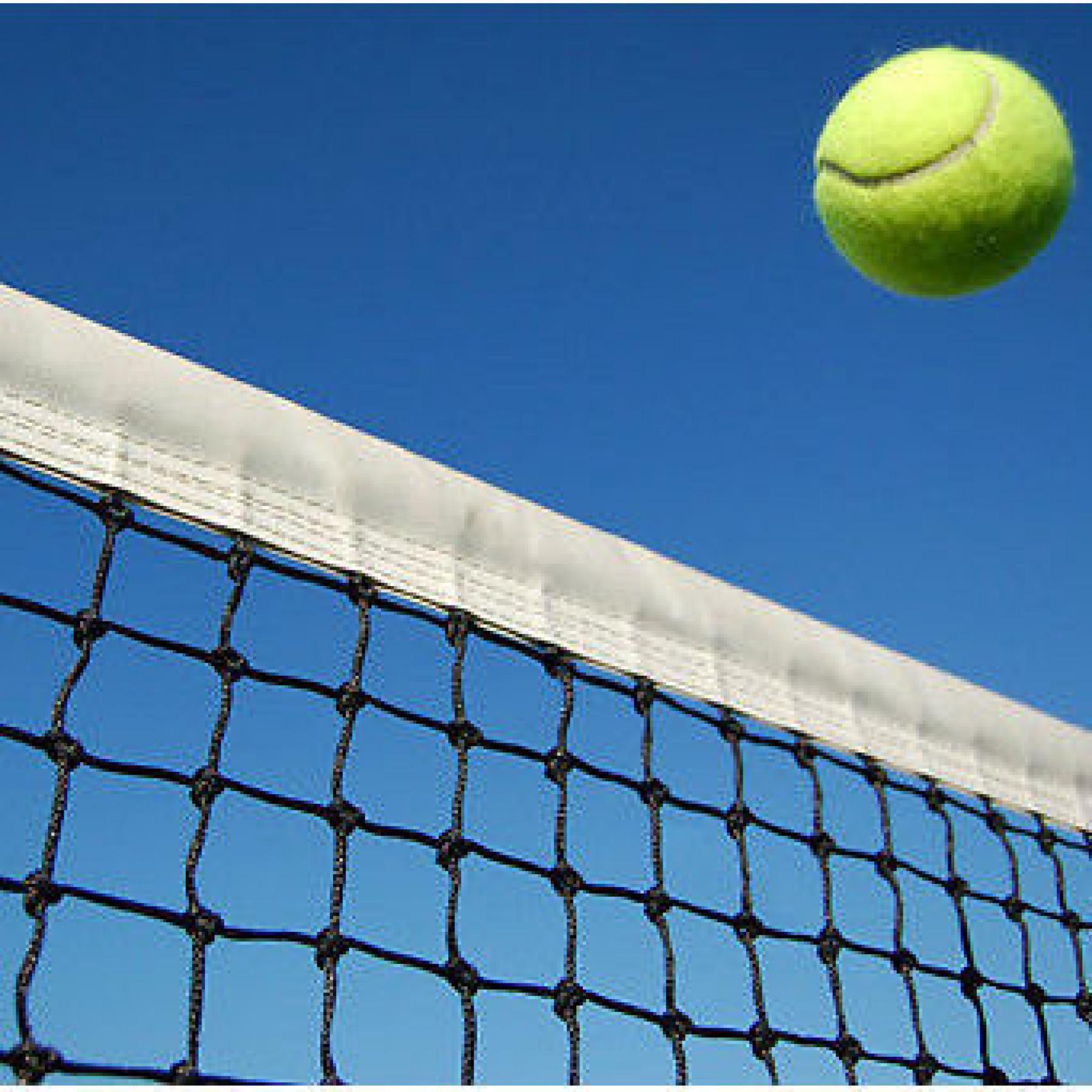 Tennis net 2mm Carrington training