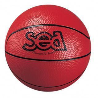 Discovery basketball Sporti France Sea