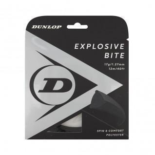 Rope Dunlop explosive bite