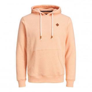 Jack & Jones Jortons Hooded Sweatshirt