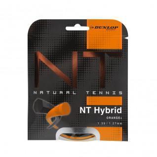 Rope Dunlop hybrid