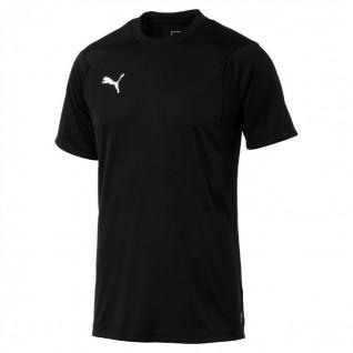 Puma jersey Liga Training