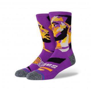 Socks NBA James