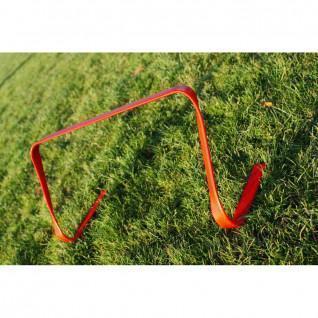 Hedge flexible Lynx Sport 23 cm