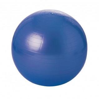 gymnastic ball - 55 cm