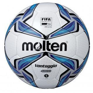 Molten ball FV4800 Size 5 [Size 5]