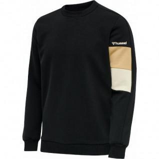 Sweatshirt Hummel hmlAidan