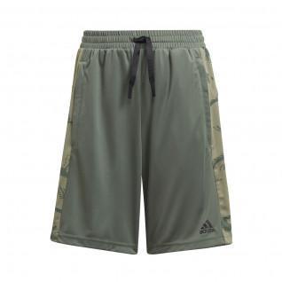 adidas Designed To Move Camouflage Kids Shorts