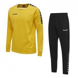 Pack Hummel Hmlauthentic Training Sweatshirt
