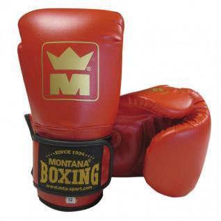 Boxing Gloves Montana MMB100