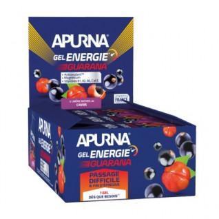 Lot of 24 gels Apurna Guarana Energy blackcurrant - 35g