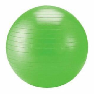 Gym ball 65cm Power Shot