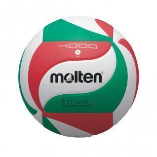 Molten V5M4000 competition ball