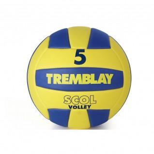 Tremblay scol'volley ball