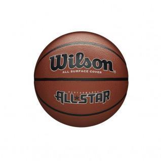 Wilson Performance All Star Ball [Size 7]